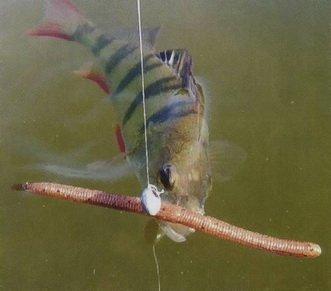 Оснастка вэки по пассивной рыбе: виды монтажа, проводка приманки
