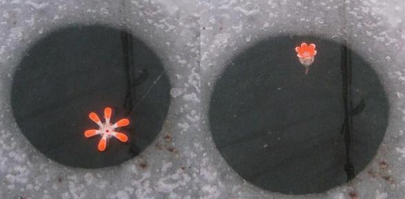Зимняя поплавочная снасть: оснастка, как выбрать поплавок, удочку и леску