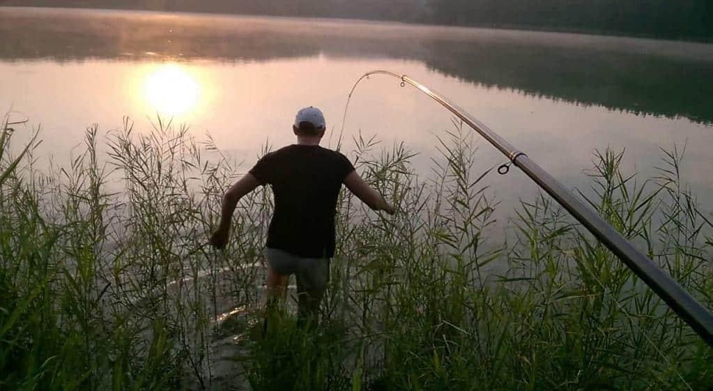 Рыбалка на карпа на поплавочную удочку летом, весной и осенью