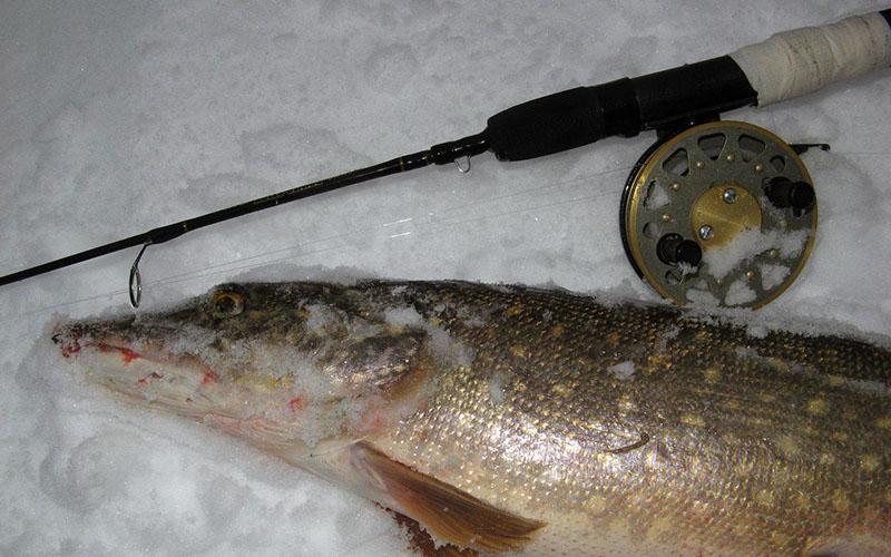 Выбираем катушки для зимней рыбалки для разных типов снастей и удочек