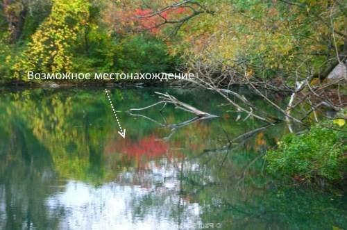 Рыбалка на сазана - как и на что ловить весной, летом и осенью дикого карпа