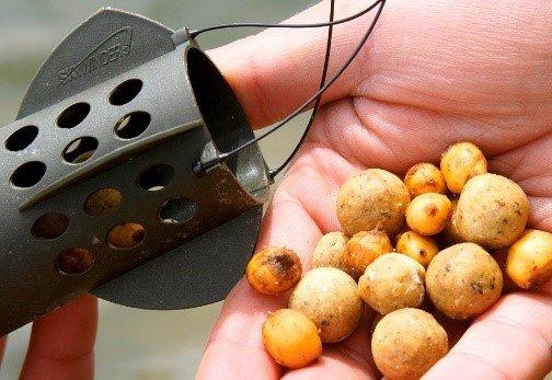 Тигровый орех для ловли карпа: как приготовить самостоятельно и что купить?