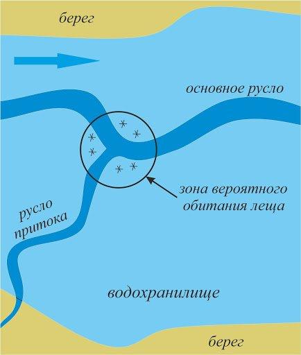 Ловля леща зимой на мормышку: уловистые модели для течения и стоячей воды