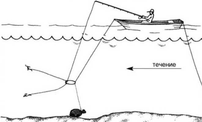 Ловля леща на кольцо с лодки летом и зимой со льда