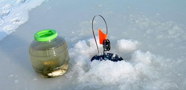 Ловля судака зимой на жерлицы на течении и малопроточных водоемах