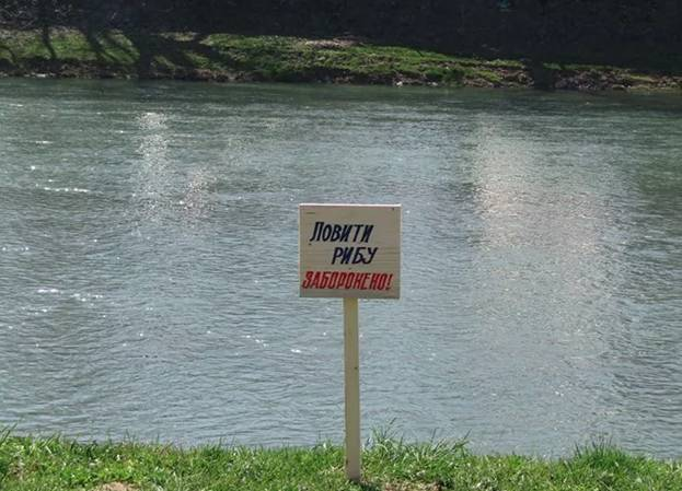 Когда можно начинать ловить рыбу весной и на что можно рыбачить