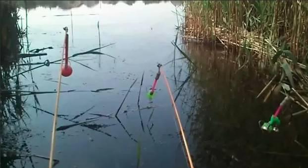 Рыбалка в мае на карася - как и на что ловить?