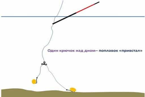 Ловля карася на поплавочную удочку: на что ловить, как оснастить и поймать на поплавок