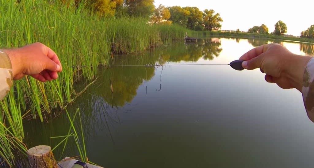 Ловля карася на фидер в стоячей воде: сбор снасти, секреты и тактика