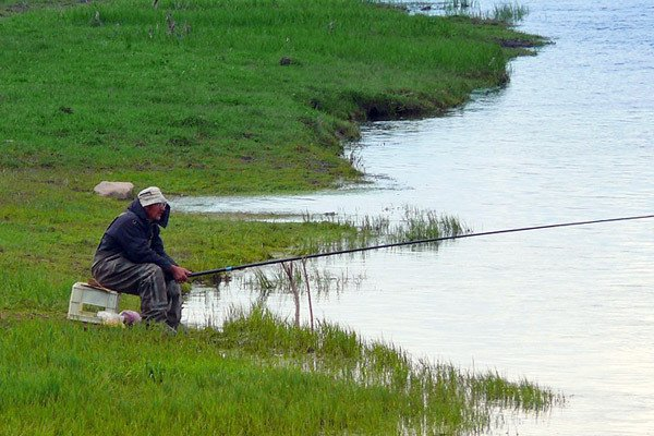 Рыбалка весной по открытой воде - когда начинается сезон, кто клюет и на что
