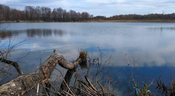 Ловля карася в апреле - на что клюет, где искать и как ловить