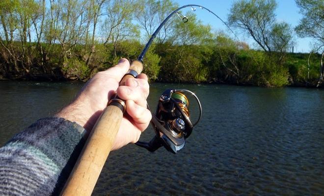 Как выбирать спиннинг для ловли хищной рыбы: советы для начинающих
