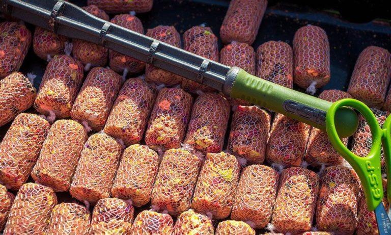 Лучшие ПВА материалы, используемые в карпфишинге и для рыбалки в целом