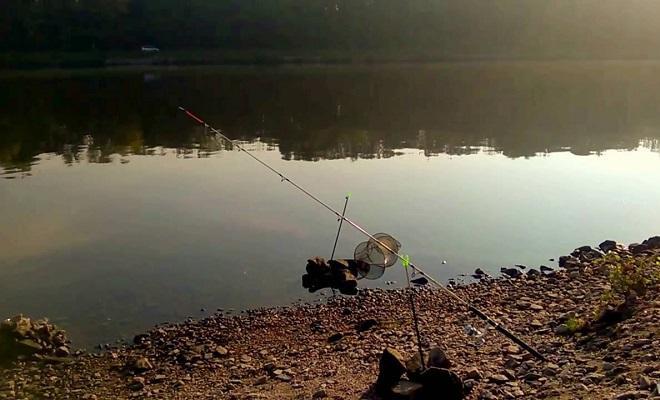 Ловля сазана осенью: где искать и на что ловить