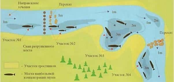 Щука осенью: повадки и ловля в сентябре, октябре и ноябре