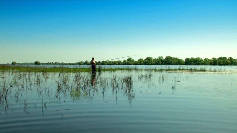 Ловля воблы в Астрахани весной - когда, как, где и на что ловить?