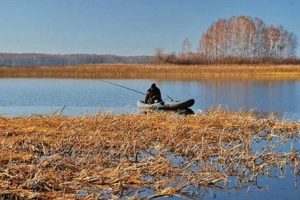 Места стоянки и повадки сома осенью, особенности ловли усатого и всеядного