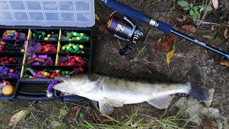 Ночная рыбалка осенью - судак, лещ, налим и другие