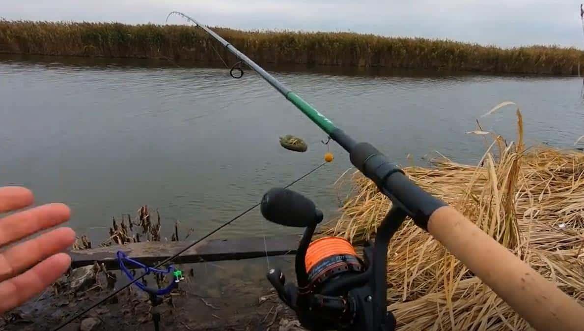 Повадки щуки в ноябре, где ее искать и на что ловить