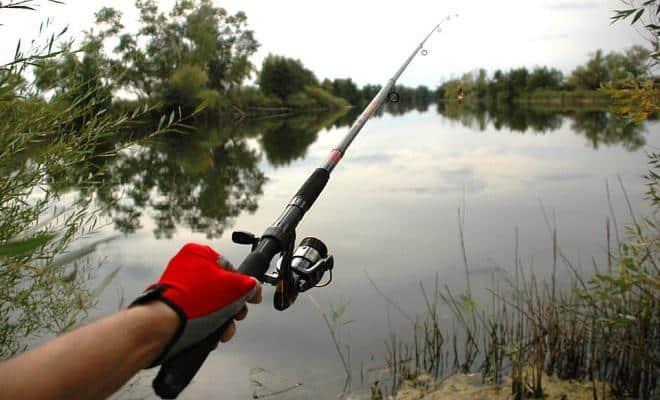 Ловля на спиннинг осенью с берега и лодки, на реках и жабовниках
