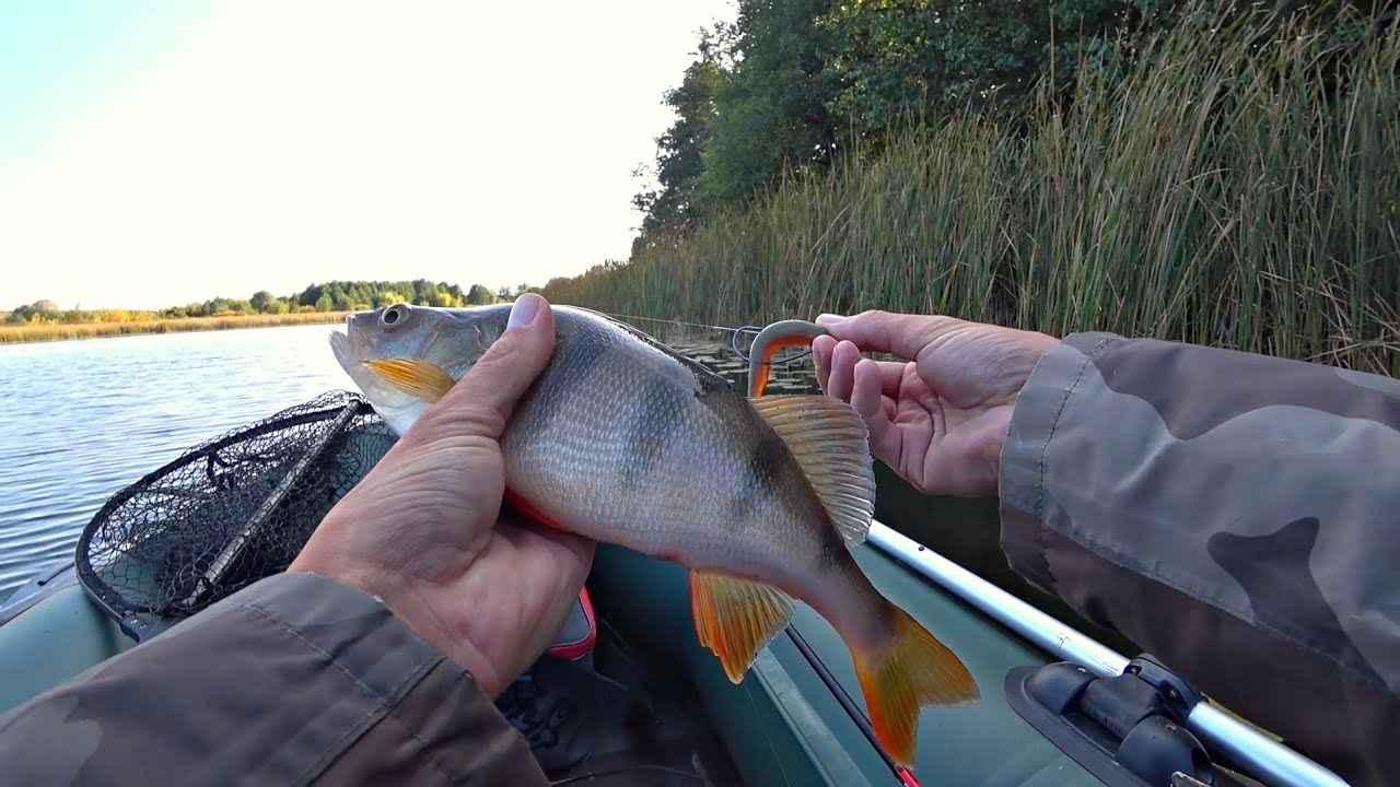 Рыбалка осенью на озерах: на что ловить, какую рыбу и где искать