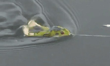 Лягушка незацепляйка Wobbler Frog в практических условиях рыбалки